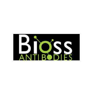 bioss antikorlar brk kimya ve biyoteknoloji