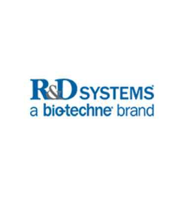 R&D Systems Elisa Assay Kitler BRK Kimya ve Biyoteknoloji